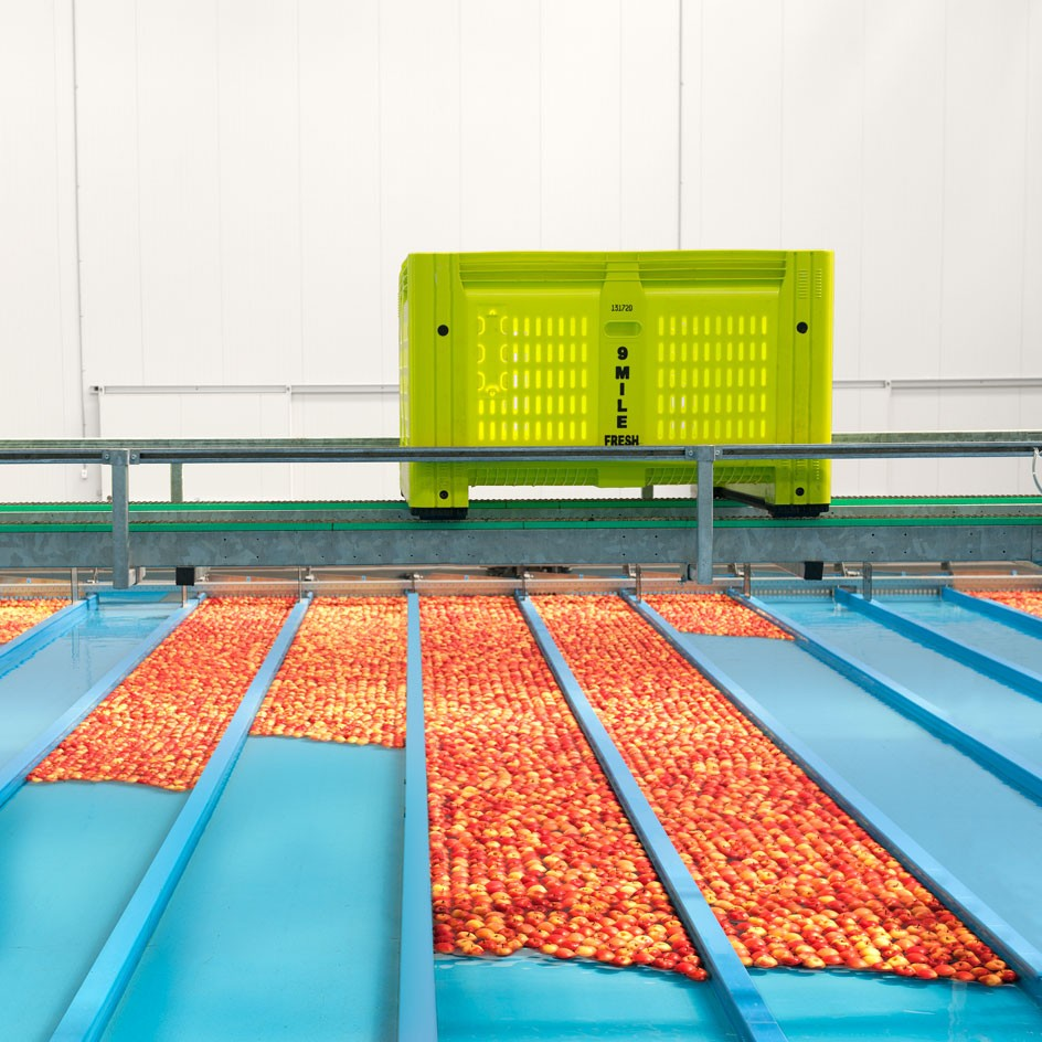 <div>corporate</div><div> <a href='http://www.nedmeldrum.com.au/project/nine-mile-fresh-apple-sorting-facility/'>View Series</a></div>